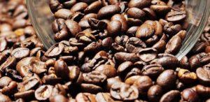 Nuestra pasión por el café nos lleva a seleccionar granos únicos por su origen.