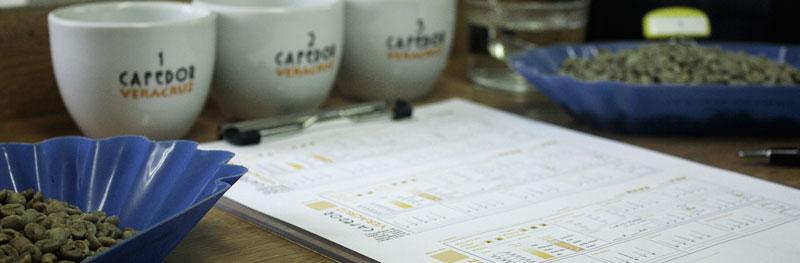 Concurso de Cata de Café