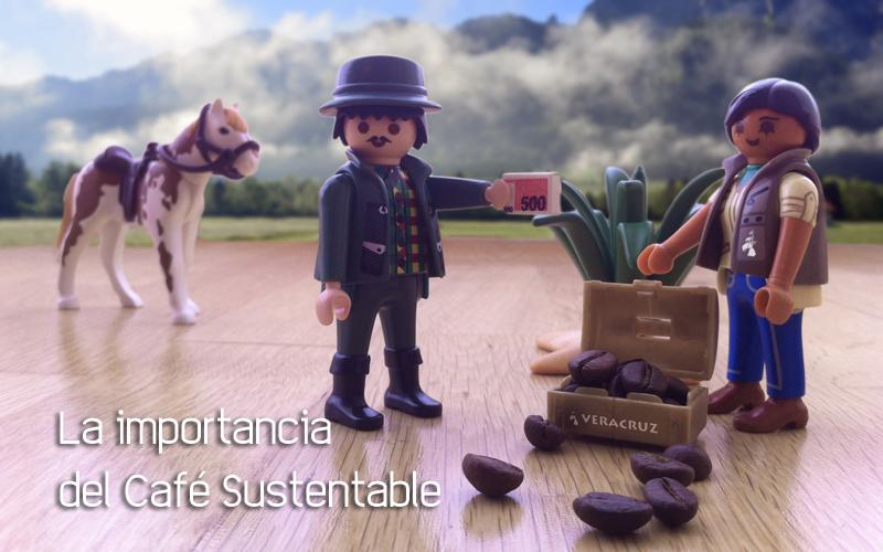 La importancia del Café Sustentable