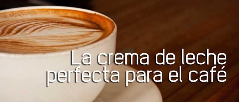 Espuma de leche para el café