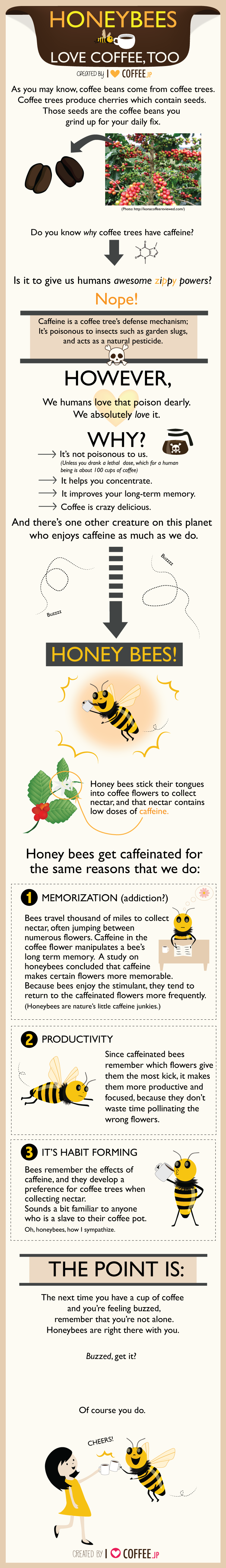 A las abejas también les gusta el café