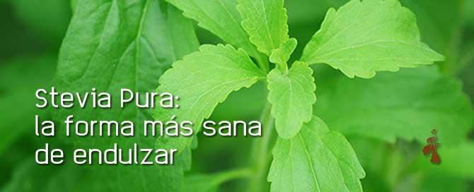 Stevia Pura en monodosis: el edulcorante más sano para tu café o infusión