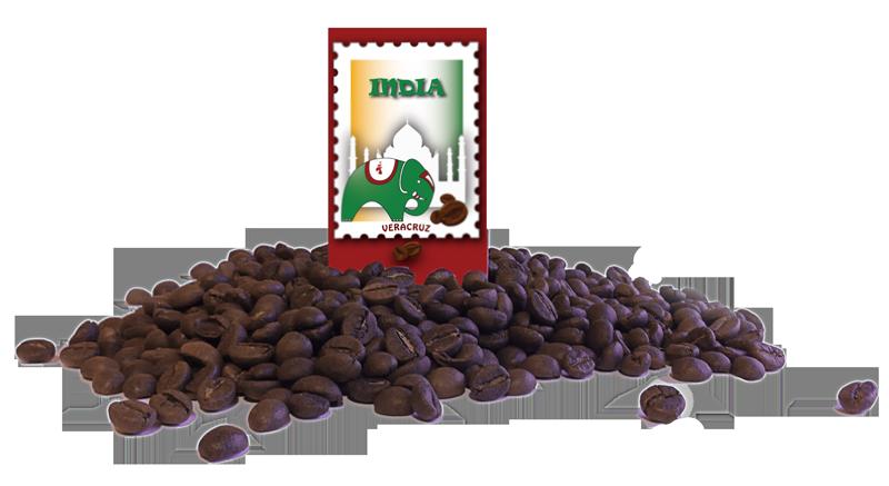 El barista escogió café India Malabar por su proceso amonzonado y su peculiar sabor.
